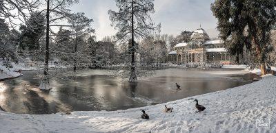 Palacio de Cristal nevado en el Parque del Retiro, Madrid, por Adolfo Gosálvez. Venta de Fotografía de autor en edición limitada. AG Shop