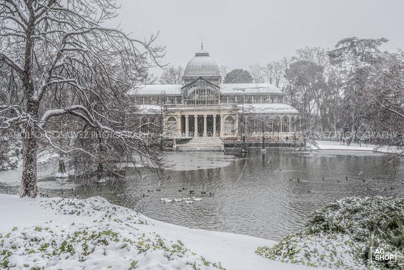 Filomena. Madrid Nevado. Palacio de Cristal del Parque del Retiro por Adolfo Gosálvez. Venta de Fotografía de autor en edición limitada. AG Shop