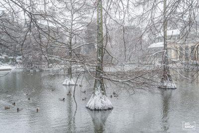 Filomena. Madrid Nevado. Lago del Palacio de Cristal en el Parque del Retiro por Adolfo Gosálvez. Venta de Fotografía de autor en edición limitada. AG Shop