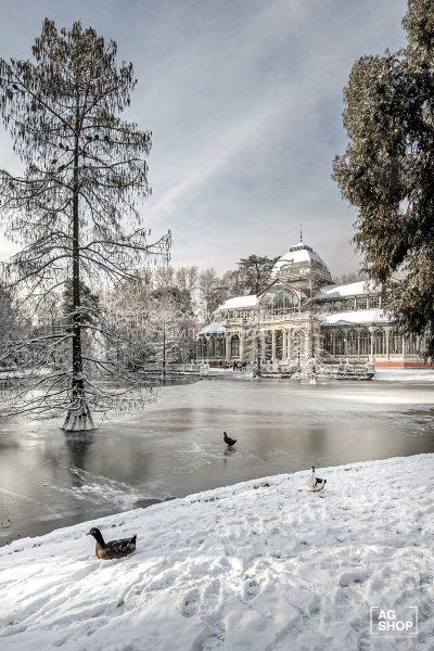 Madrid Nevado. Palacio de Cristal en el Parque del Retiro por Adolfo Gosálvez. Venta de Fotografía de autor en edición limitada. AG Shop