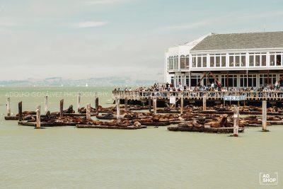 Pier 39, San Francisco, USA, por Adolfo Gosálvez. Venta de Fotografía de autor en edición limitada. AG Shop